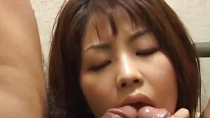 Asian babe sucking sample dick